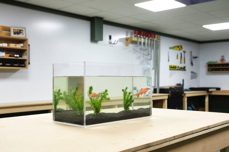 Décoration de votre aquarium