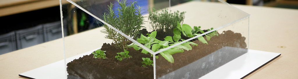 Mini-serre de jardin DIY en 5 étapes